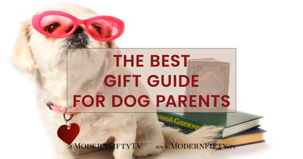 Special Gift Ideas For The Dog Lover In Your Life Modernfifty Tv